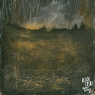 "BLACK TOSKA Someone's Nightmare Blues (10"")"