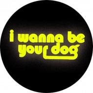 Chapa I Wanna Be Your Dog