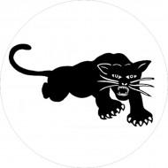 Chapa Black Panthers