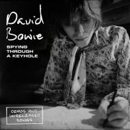 """DAVID BOWIE Spying Through A Keyhole (4x7"""")"""