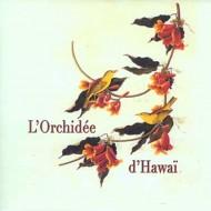 L'ORCHIDEE d'HAWAI Iron Horses