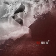 RED BALEINE Red Baleine